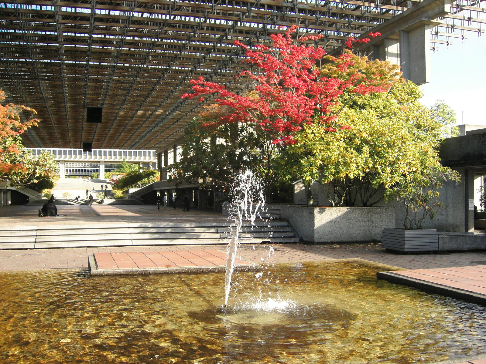 Campus_fall2006_025